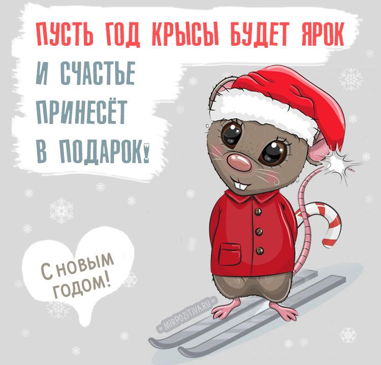 """На сером фоне изображена симпатичная крыска на лыжах и в костюме Санты. В левой части надпись: """"Пусть год крысы будет ярок, и счастье принесёт в подарок"""". В левом нижнем углу надпись """"С новым Годом!"""""""