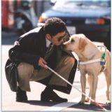 «Рюкзачок читай-ка. Сборник Аудиокниг «Посвящение собаке»
